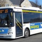 115 bus